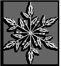 Weihnachtsfarbe Weiss